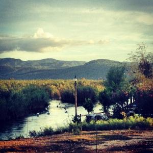 The Azmak River in Akyaka